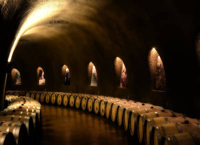 Wine Barrel Photograph - Fruits Of The Vine by Mountain Dreams