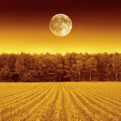 Full Moon Over A Field Art Print by Detlev Van Ravenswaay