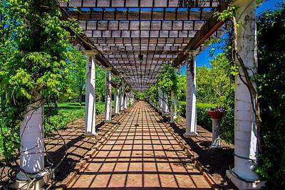 Photograph - Garden Lattice Walkway With Stone Pavers And Vine Flowers Throug by Alex Grichenko