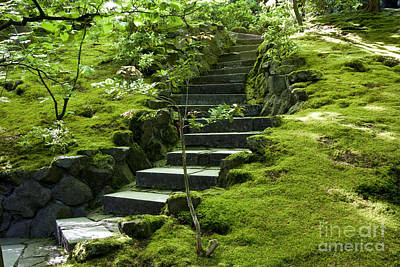 Photograph - Garden Path by Brian Jannsen