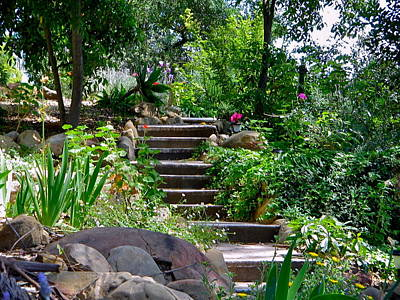 Photograph - Garden Steps by Denise Mazzocco