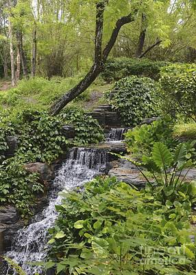 Photograph - Garden Waterfall by Carol  Bradley
