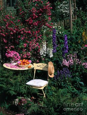 Garden With Chair Art Print by Hans Reinhard