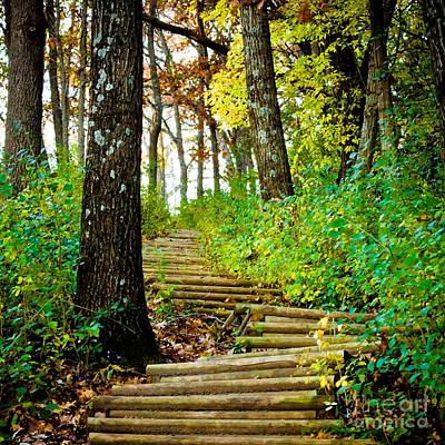 Art Print featuring the photograph Garvin Heights Stairway by Kari Yearous