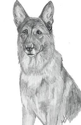 Police Dog Drawing - German Shepherd by Lorah Buchanan