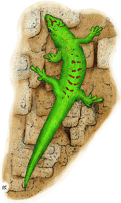 Photograph - Giant Day Gecko by Roger Hall
