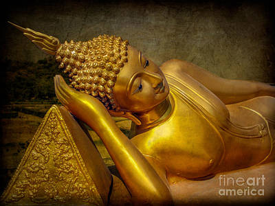 Golden Buddha Art Print by Adrian Evans