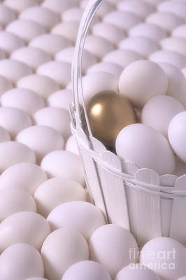 Photograph - Golden Egg by Jim Corwin