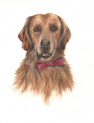 Painting - Golden Retriever by Nan Wright