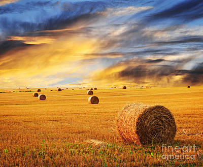 Anne Geddes - Golden sunset over farm field with hay bales by Elena Elisseeva