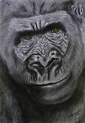 Painting - Gorilla Portrait by David Hawkes