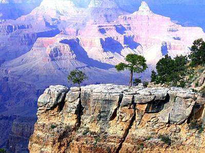 Photograph - Grand Canyon 1 by Will Borden
