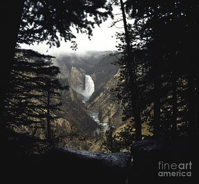 Grand Canyon Of The Yellowstone-signed Art Print