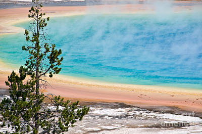 Yellowstone Photograph - Grand Prismatic Spring by Delphimages Photo Creations