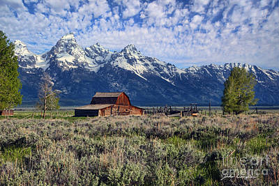 Photograph - Grand Tetons by John Douglas
