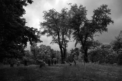 Graveyard 1 Art Print