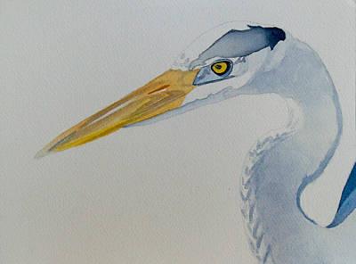 Fauna Painting - Great Blue Heron by Jason M Silverman