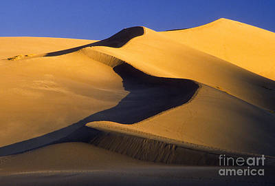 Photograph - Great Sand Dunes National Park & by Richard and Ellen Thane