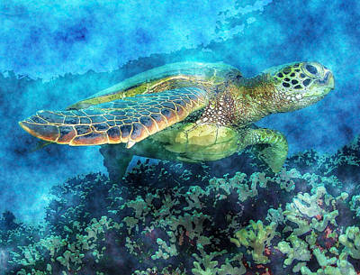 Green Sea Turtle Painting - Green Turtle by MotionAge Designs