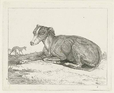 Greyhounds, Jan Dasveldt Art Print