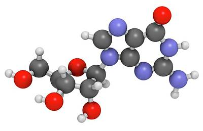 Nucleoside Photograph - Guanosine Purine Nucleoside Molecule by Molekuul