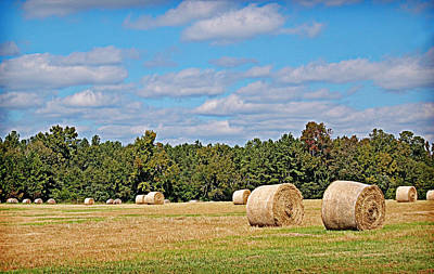 Photograph - Hay Field by Linda Brown