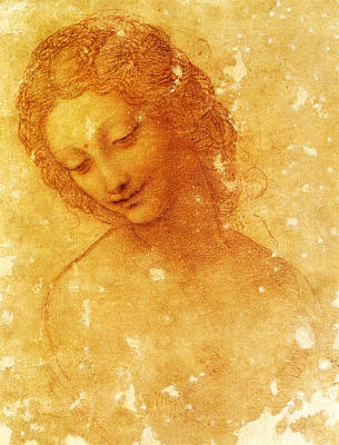 Leda Painting - Head Of Leda by Leonardo Da Vinci