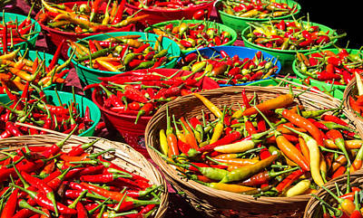 Photograph - Healthy Chili Peppers by Deb Buchanan
