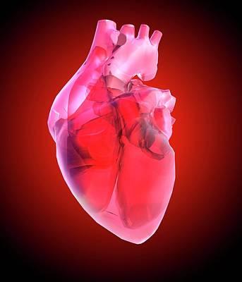 Organ Photograph - Heart Of Glass by Mehau Kulyk