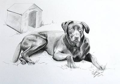 Custom Pet Portrait Drawing - Hershey by Joette Snyder