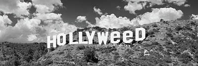 Photograph - Hollywood Sign Changed To Hollyweed by Panoramic Images