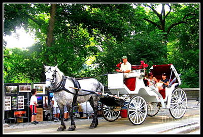 Horse And Carriage In Central Park Art Print