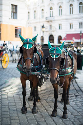 Fiaker Photograph - Horses And Carriage In Vienna by Frank Gaertner