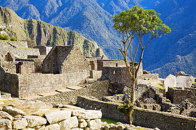 Photograph - Houses Of Machu Picchu by Alexey Stiop