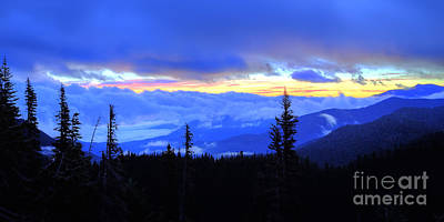 Olympic National Park Photograph - Hurricane Ridge by Twenty Two North Photography