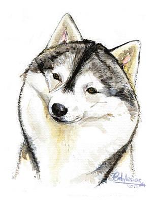 Husky Siberiano Original