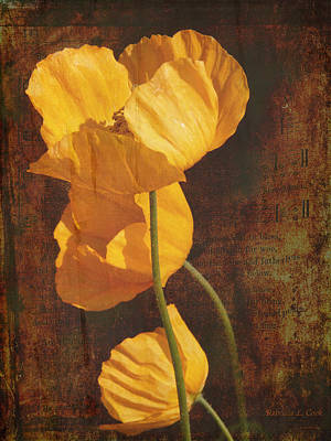 Stamen Mixed Media - Icelandic Poppy by Bellesouth Studio