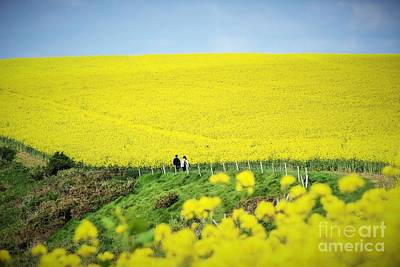 Photograph - Rapeseed Field... Love Story by Katy Mei