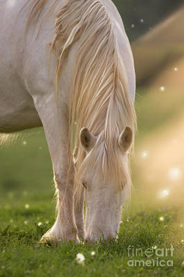 Winter Animals Royalty Free Images - In The Land Of  Unicorns Royalty-Free Image by Angel Ciesniarska