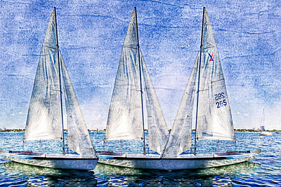 Into The Blue Art Print by Debra and Dave Vanderlaan