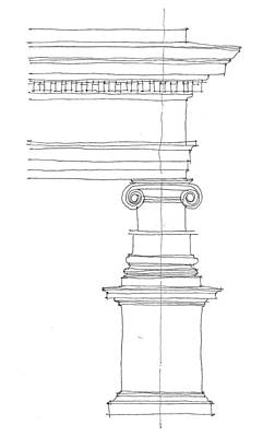 Vitruvius Drawing - Ionic Order by Calvin Durham