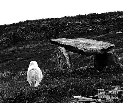 Irish Standing Stones Print by Patricia Griffin Brett