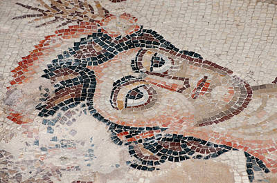 Mosaic Photograph - Israel, Lower Galilee, Floor Mosaic by Ellen Clark