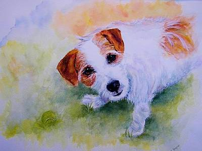 Dog With Tennis Ball Painting - Jack Russell - Portrait - Play Ball by Carolyn Gray