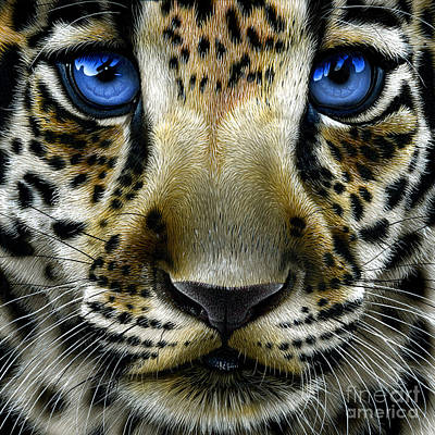 Wild Cat Painting - Jaguar Cub by Jurek Zamoyski