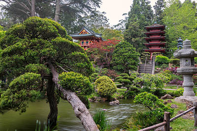 Pagoda Photograph - Japanese Tea Garden - Golden Gate Park by Adam Romanowicz