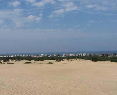 Dune Photograph - Jockey's Ridge 4 by Cathy Lindsey