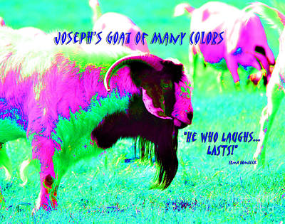 Photograph - Josephs Goat Of Many Colors by Linda Cox
