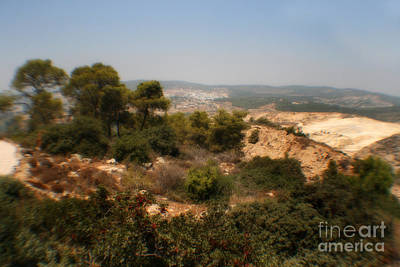Photograph - Judean Hills by Doc Braham