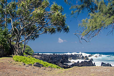 Photograph - Keanae by Sharon Mau